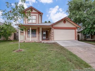 San Antonio Single Family Home New: 7114 Sunlit Trail Dr