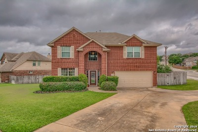 San Antonio Single Family Home New: 20843 Pedregoso