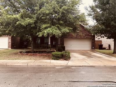 San Antonio Single Family Home New: 24414 Treaty Creek