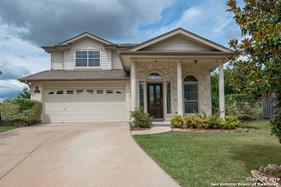 New Braunfels Single Family Home New: 352 Ibis Falls Dr