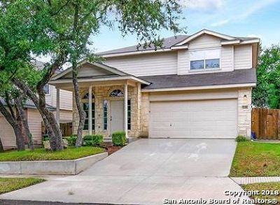 San Antonio Single Family Home New: 15815 Drexel Run