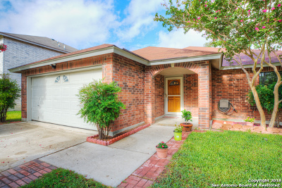 San Antonio Single Family Home New: 6931 Cactus Meadows Dr