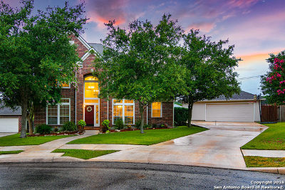 San Antonio Single Family Home New: 24403 Bear Mtn