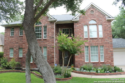 Schertz Single Family Home New: 949 Blue Forest Dr