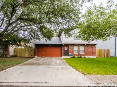 Converse Single Family Home New: 8210 Meadow Horn Dr