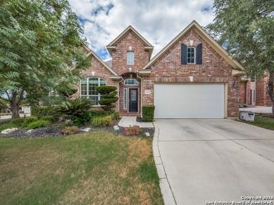 San Antonio Single Family Home New: 25303 Bunker Dr