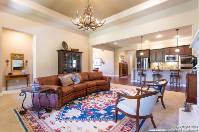 Boerne Single Family Home For Sale: 120 Cantina Sky