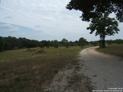 Bexar County Farm & Ranch New: 739 Woodland