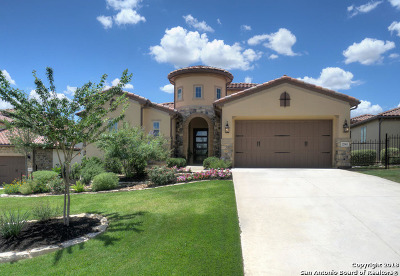 San Antonio Single Family Home New: 22903 Entiempo