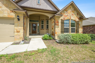 Helotes Single Family Home For Sale: 17923 Bierstadt Mt