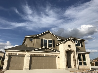 New Braunfels Single Family Home New: 1733 Fall View