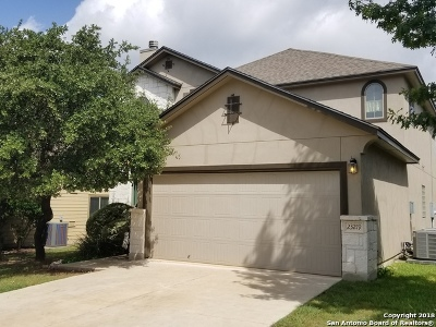 San Antonio Single Family Home New: 23219 Cardigan Chase