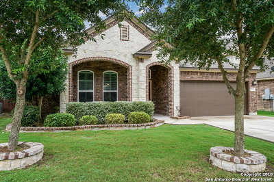Cibolo Single Family Home New: 257 Flint Rd