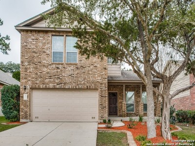 San Antonio Single Family Home New: 31 Branwood