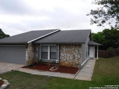 Converse Single Family Home New: 10010 Bluelake Ridge Dr
