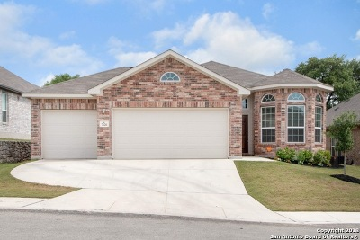 Boerne TX Single Family Home New: $265,500