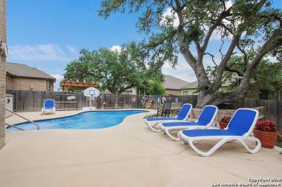 San Antonio Single Family Home New: 11447 Wake Robin
