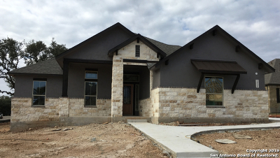 New Braunfels Single Family Home New: 2543 Etzel Ter