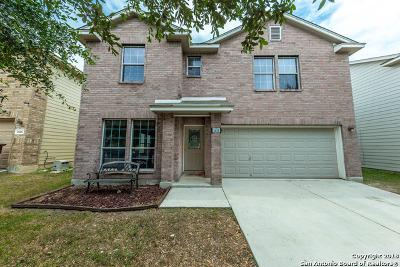 San Antonio Single Family Home New: 2610 Gato Del Sol