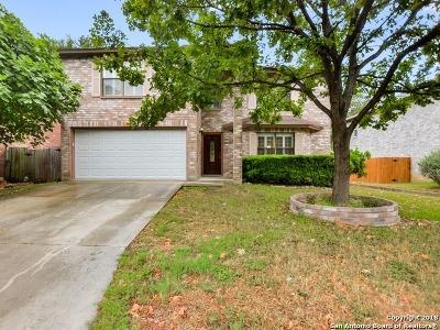 San Antonio Single Family Home New: 16515 Eagle Cross Dr