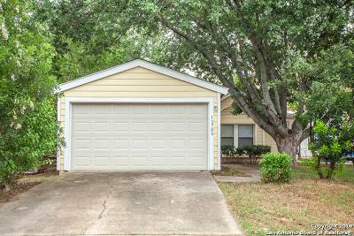 San Antonio Single Family Home New: 11706 Spring Dale Dr