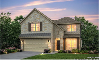 Boerne Single Family Home New: 27454 Paraiso Sands