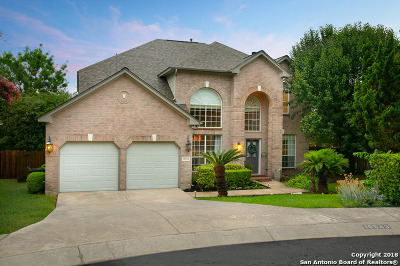 San Antonio Single Family Home New: 19543 Crystal Oak