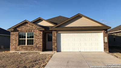 New Braunfels Single Family Home New: 2521 McCrae