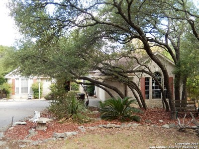 San Antonio TX Single Family Home New: $329,900