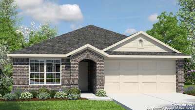 New Braunfels Single Family Home New: 2526 McCrae