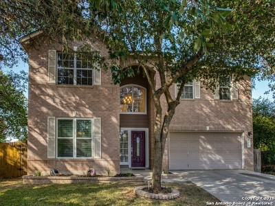San Antonio Single Family Home New: 11903 Dudleston