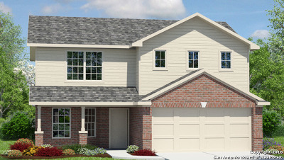 New Braunfels Single Family Home New: 2522 McCrae