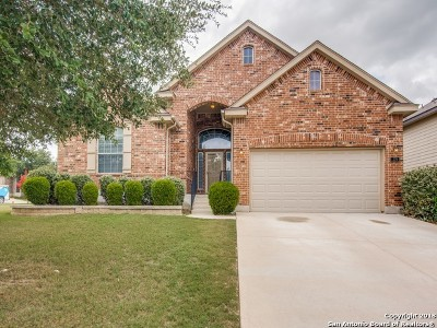 San Antonio TX Single Family Home New: $254,900