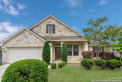 San Antonio Single Family Home New: 28 Montaigne