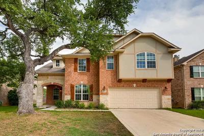 San Antonio Single Family Home New: 24906 Kiawah Isle Dr