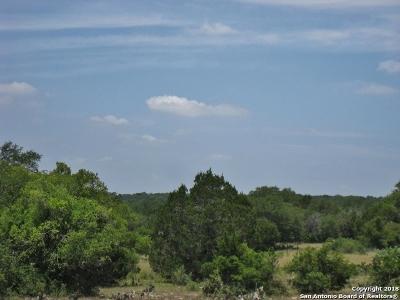 Wimberley Farm & Ranch For Sale: Windmill Run