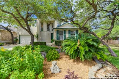San Antonio Single Family Home New: 4023 Legend Creek Dr