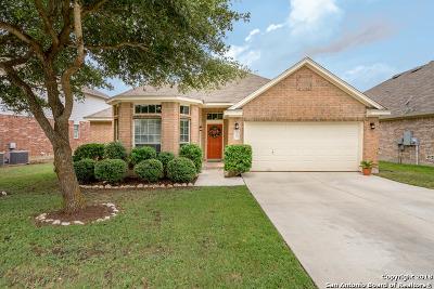 San Antonio Single Family Home New: 22007 Dolomite Dr