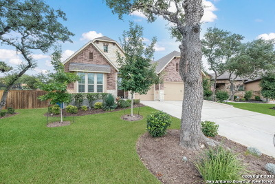 San Antonio Single Family Home New: 3802 Ricegrass