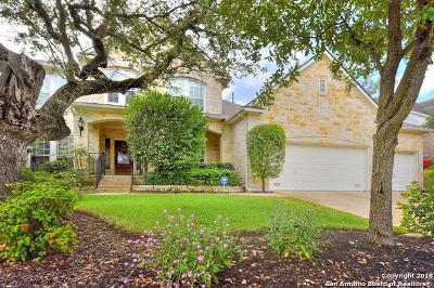 San Antonio Single Family Home New: 410 Highland Hill