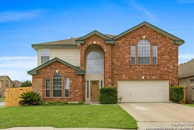 San Antonio Single Family Home New: 24603 Wine Rose Path