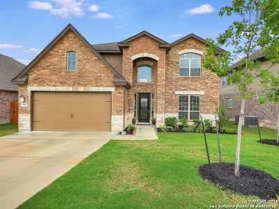 Cibolo Single Family Home For Sale: 244 Bee Caves Cv