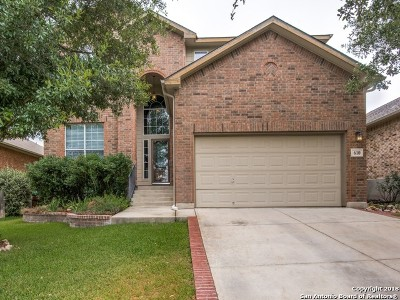 San Antonio Single Family Home New: 610 Point Valley