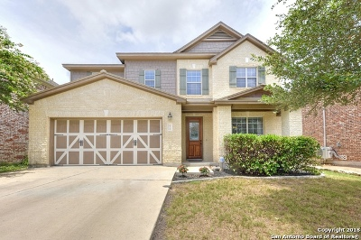 Boerne TX Single Family Home New: $293,000