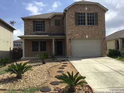 San Antonio Single Family Home New: 11315 Saratoga Coach