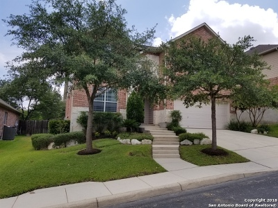 San Antonio Single Family Home New: 25734 Coleus