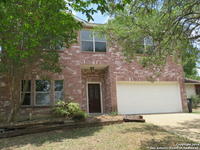 San Antonio Single Family Home New: 25027 Granite Path