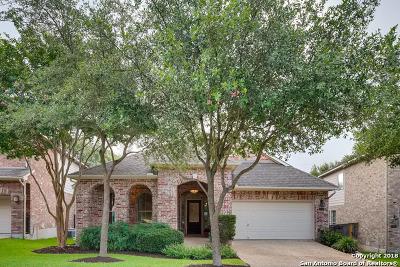 San Antonio Single Family Home New: 23518 Enchanted Fall