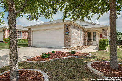 San Antonio Single Family Home New: 12735 Cedar Fly