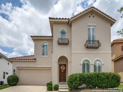 San Antonio TX Single Family Home New: $364,500
